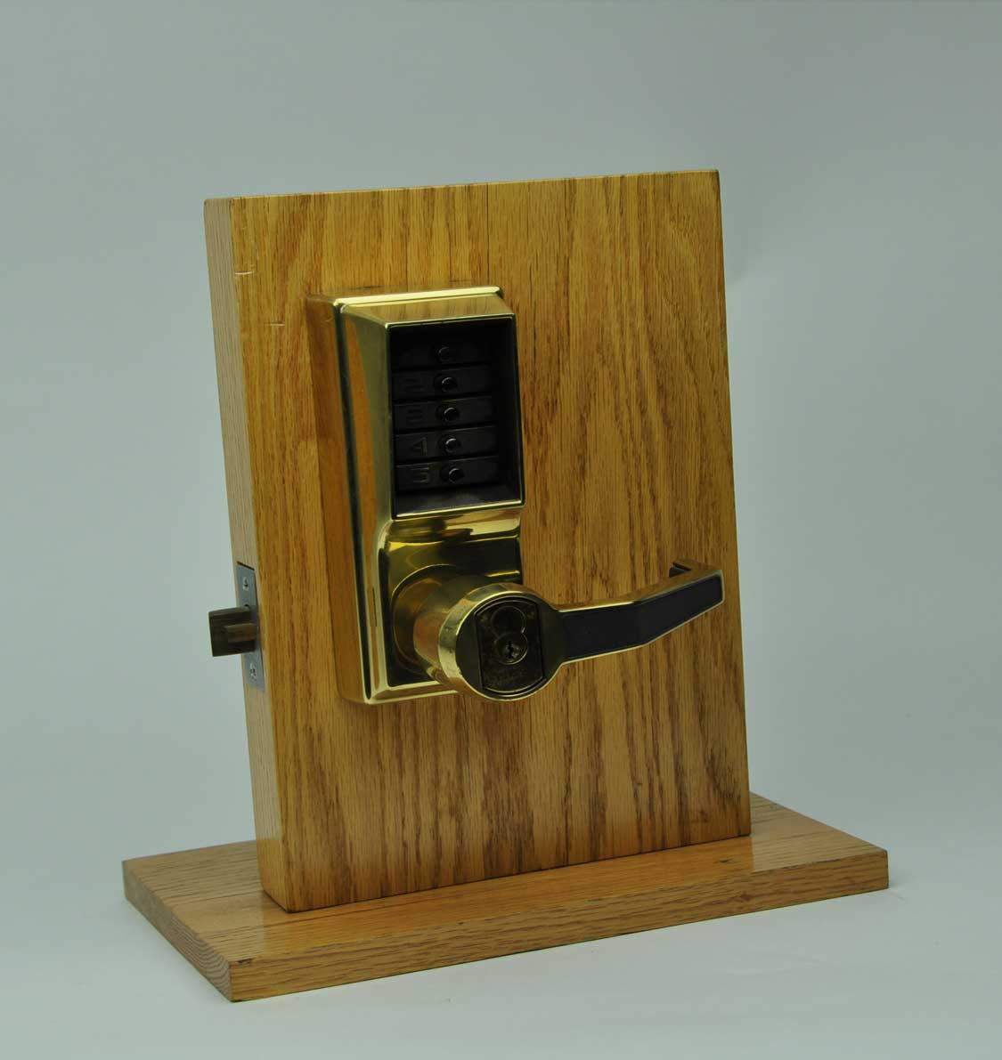 Commercial Locksmith-Frog Lock Locksmiths